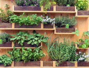 come costruire ed organizzare l'orto sul balcone
