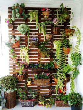 Come fare l\'orto sul balcone o in casa - Sfumature Varie